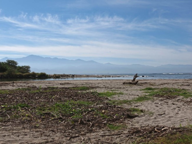 ameca meets sea