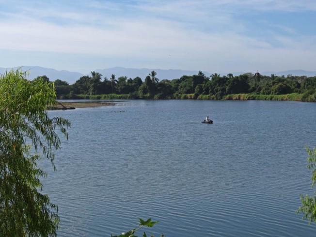 ameca view3