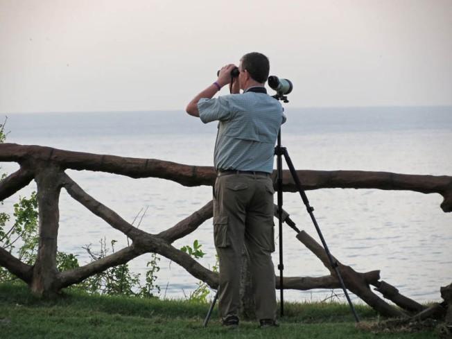 seawatching